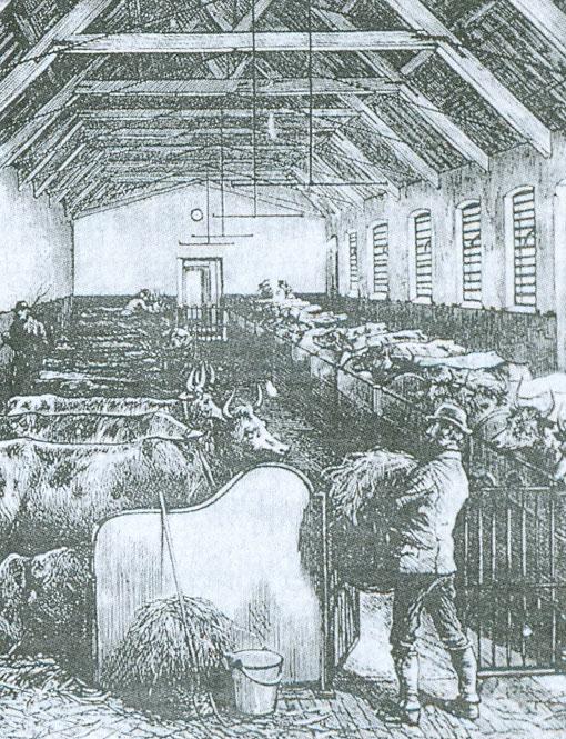 5-Earlswood-farm