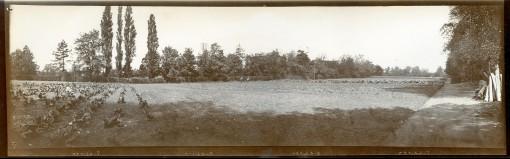Normansfield Panorama 6