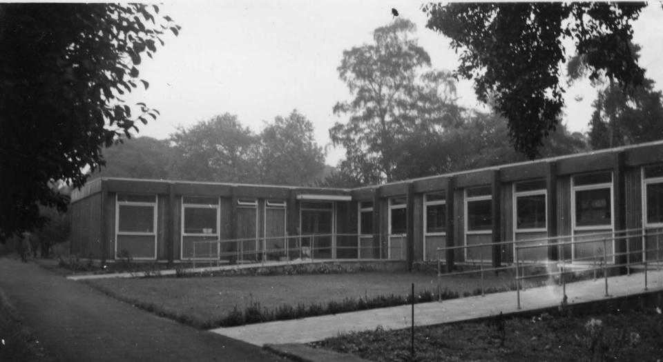 stell-brain-1961